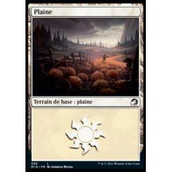 Plaine - Plains